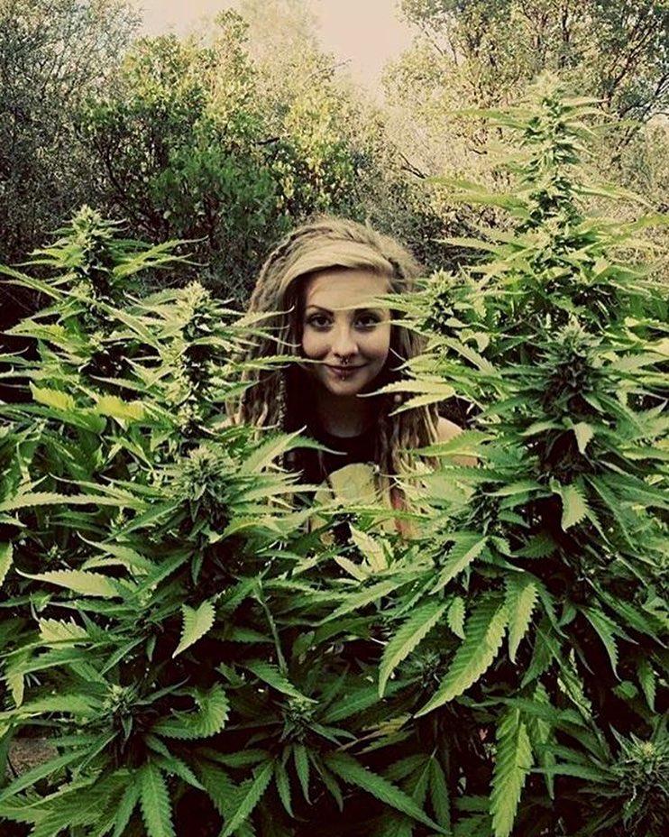 #weed #dope #happyplace #maryjane #dopechicks #hanshouse #ganjagoddess #marijuanaheaven #stonersociety #babeswithbongs #smoke #righteousdude #earthlings #ganjaforest #ganja #420 #420chicks