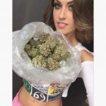 Weed 69 with you #weedhitit #joint #stonergirls #weedlife #420girl #stonernation #weedhead #blunts #terps #ganjagirls…