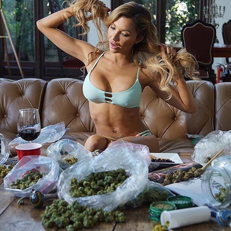 #weedhitit #weedmeme #420feed #cannabisislife #weedbabes #weedtime #weedsmoke #cannabisoil #budtender #smokepurpp #weedwomen #weedhumor #cannabisdaily #hightimesmagazine #topshelfonly #420daily #smokeone #weedsociety #weed420feed #wedontsmokethesame #420girls #weshouldsmoke #wax #weedstagram #weed