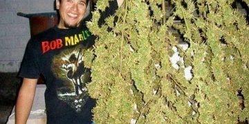 #weedhitit #girlswhosmokeweed #stonergirl #stonersociety #weedstagram420 #bongbeauties #gangagirls #weedbabes #sexystoners #stonerbabe #cannaculture #420girls #weedsmokinggirls #stonerbabe #girlswhotoke #somegirlsgethigh #weedporn #weedhitit250